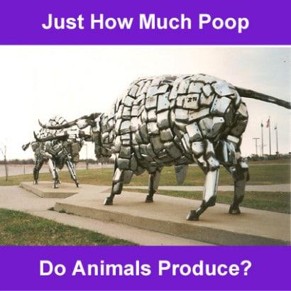 animal-manure-stats