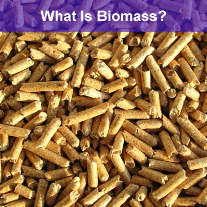 what-is-biomass