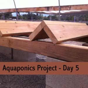 aquaponics-project-day-5