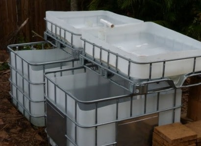 aquaponics_in_a_tote