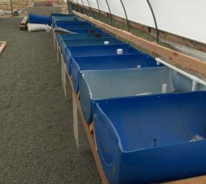 aquaponics_barrel_halves_cut_and_mounted
