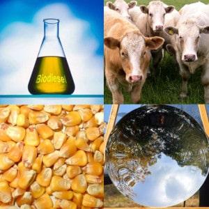 alternative-fuels