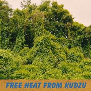 heat with highly renewable kudzu
