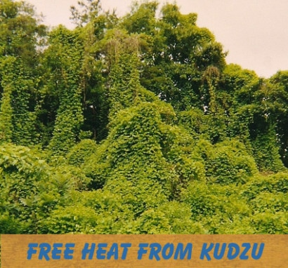 heat with highly renewable kudzu