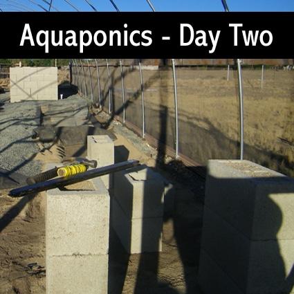 aquaponics-with-barrels-day-two