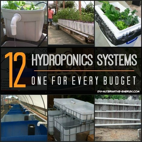 12 Hydroponics System Designs One For Every Budget